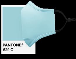 Pantone® Referenser Munskydd